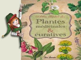 Atlas illustré des plantes médicinales et curatives